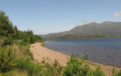 View of the shore and Loch Maree at Slatterdale