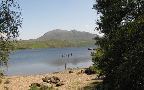 The shore of Loch Maree at Tollie